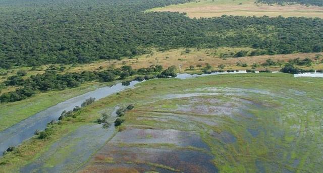 Autoridades angolanas priorizam qualidade ambiental (ANGOP)