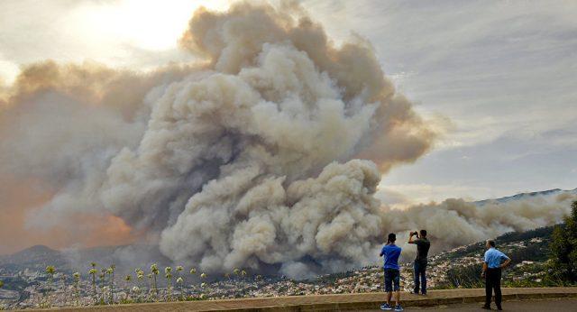 Portugal em chamas: Fogo atinge centro de Funchal na Madeira, moradores fogem para a costa